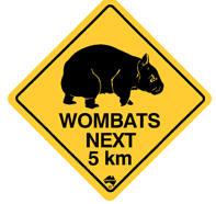 Wombat-paa-vej