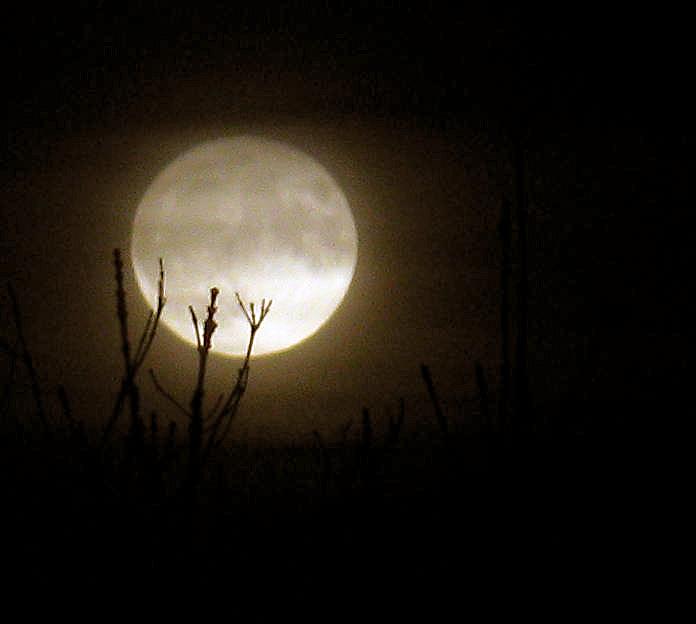 månen drejer om jorden